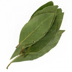 laurier en feuilles - achat, utilisation, bienfaits - épices du monde